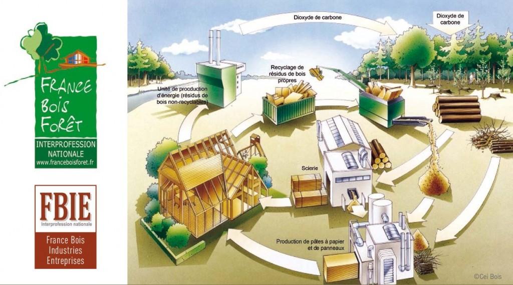 Schéma Projet Forêt Bois pour la France